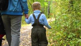 Un padre joven camina en el parque del otoño con su niño El padre lleva a cabo su mano del ` s del hijo Autumn Landscape almacen de video