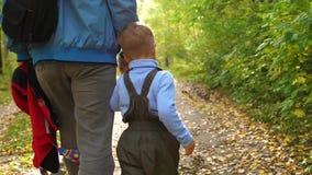 Un padre joven camina en el parque del otoño con su niño El padre lleva a cabo su mano del ` s del hijo Autumn Landscape metrajes
