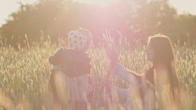 Un padre joven con una pequeña hija en sus brazos en un campo del trigo entre las espiguillas verdes en los rayos del almacen de video