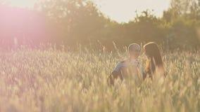 Un padre joven con una pequeña hija en sus brazos y una madre en un campo del trigo entre las espiguillas verdes en los rayos almacen de metraje de vídeo