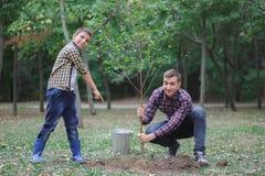 Un padre joven y su hijo están plantando un árbol en su yarda Dos muchachos están plantando las plantas para el Día de la Tierra Imagen de archivo libre de regalías