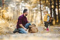 Un padre maturo con il figlio del bambino e dello zaino in una foresta di autunno fotografia stock