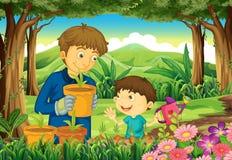 Un padre y un hijo en el bosque que riega las plantas Imagen de archivo