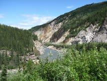 Fiume di Nenana, Alaska immagine stock libera da diritti
