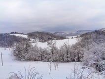 Un paesaggio della montagna con neve ed alberi nella parte anteriore Immagine Stock