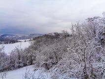 Un paesaggio della montagna con neve ed alberi nella parte anteriore fotografia stock