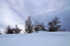 Un paesaggio di inverno con gli alberi ed alta neve in Baviera Fotografie Stock