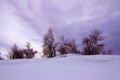 Un paesaggio di inverno con gli alberi ed alta neve in Baviera nell'ultravioletto Immagine Stock Libera da Diritti