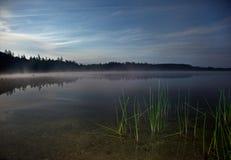 Un paesaggio di notte con le canne verdi su un lago nebbioso Fotografia Stock Libera da Diritti