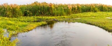 Un paesaggio di panorama con la vista verde scenica e uno stagno e una piccola barca abbandonata Fotografia Stock Libera da Diritti