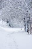 Un paesaggio di racconto di inverno Fotografie Stock Libere da Diritti