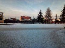 Un paesaggio freddo di giorno di inverno fotografia stock