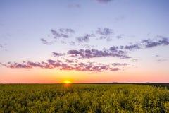 Un paesaggio pittoresco sopra un campo rurale Tramonto fotografia stock