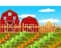 Un paesaggio rurale dell'azienda agricola illustrazione di stock