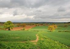 Un paesaggio rurale inglese Immagini Stock