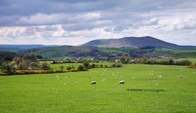 Un paesaggio rurale inglese Fotografia Stock Libera da Diritti