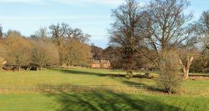 Un paesaggio rurale inglese con cereale di maturazione Immagini Stock Libere da Diritti