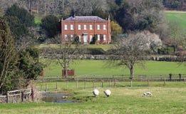 Un paesaggio rurale inglese con cereale di maturazione Fotografie Stock Libere da Diritti