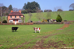 Un paesaggio rurale inglese con l'azienda agricola Immagine Stock Libera da Diritti