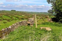 Un paesaggio rurale inglese nel distretto di punta Immagini Stock Libere da Diritti