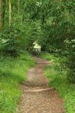 Un paesaggio rurale inglese nelle colline di Chiltern Fotografia Stock Libera da Diritti