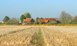 Un paesaggio rurale inglese in sole di inverno Immagini Stock
