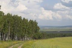 Un paesaggio russo tipico Fotografia Stock
