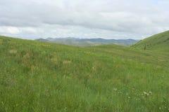 Un paesaggio tipico in Mongolia del Nord Fotografia Stock
