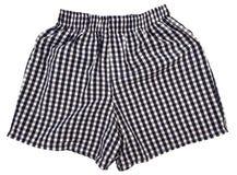 Un paio degli shorts del pugile isolati Immagine Stock Libera da Diritti