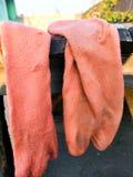 Un paio dei calzini nel colore marrone nel giorno caldo fotografia stock