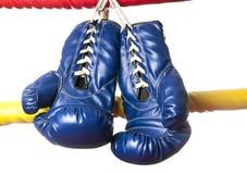 Un paio dei guanti blu Fotografia Stock Libera da Diritti