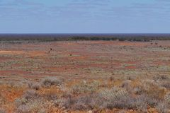 Un paisaje australiano del sur Fotografía de archivo libre de regalías