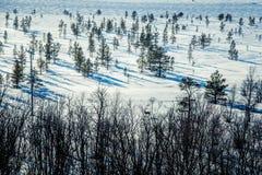 Un paisaje blanco hermoso de un pantano congelado con algunos árboles y montañas Imagen de archivo libre de regalías