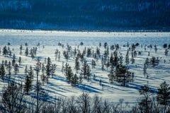 Un paisaje blanco hermoso de un pantano congelado con algunos árboles y montañas Imagen de archivo