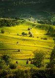Un paisaje cárpato hermoso del prado imágenes de archivo libres de regalías