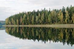 Un paisaje con los árboles mezclados Foto de archivo