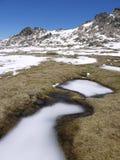 Un paisaje de la montaña rocosa en primavera Imágenes de archivo libres de regalías