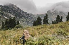 Un paisaje de niebla, una vista de los acantilados, el bosque y turista con una mochila grande, montañas de Ergaki Foto de archivo libre de regalías