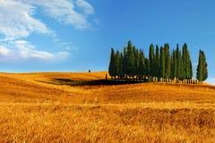 Un paisaje de Toscana Fotografía de archivo libre de regalías