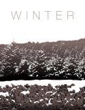 Un paisaje del invierno en tonos de la sepia libre illustration