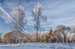 Un paisaje en el día de invierno muy escarchado Imágenes de archivo libres de regalías