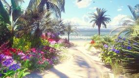 Un paisaje hermoso con una playa fabulosa con las flores hermosas y los árboles que crecen en ella, el cielo azul y la arena blan metrajes