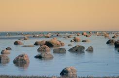 Un paisaje hermoso de la primavera en la playa con una colonia de pájaros Cisnes, cormoranes, gaviotas que se relajan en las pied Fotografía de archivo