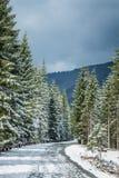 Un paisaje hermoso del bosque de las montañas del invierno con un camino Foto de archivo
