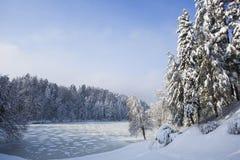 Un paisaje hermoso del invierno imagenes de archivo