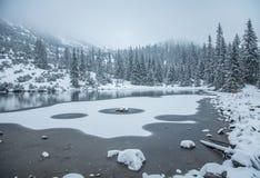 Un paisaje hermoso del invierno con un lago de la montaña en ventisca Fotos de archivo libres de regalías
