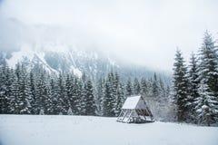 Un paisaje hermoso del invierno con un lago de la montaña en ventisca Foto de archivo libre de regalías