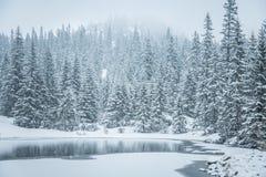 Un paisaje hermoso del invierno con un lago de la montaña en ventisca Imagen de archivo libre de regalías