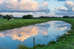 Un paisaje hermoso entre las granjas lecheras holandesas fotos de archivo