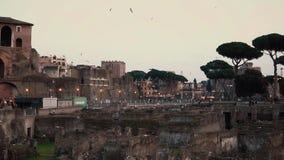 Un paisaje inspirador hermoso de la tarde de ruinas romanas antiguas en Roma, Italia almacen de metraje de vídeo